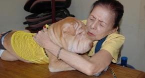 Tita Joji with her Sharpei